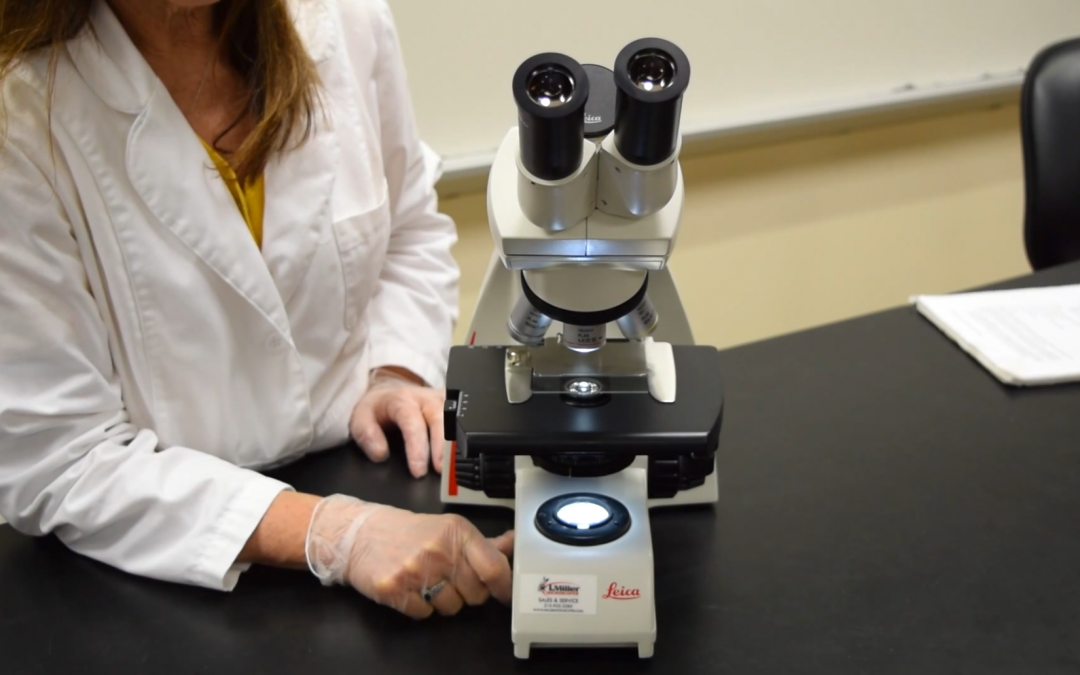 Video – MCCC Microbiology: Parts of the Microscope